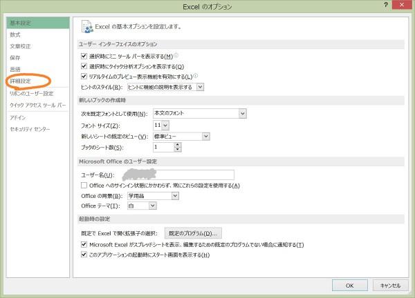Excel 詳細設定1
