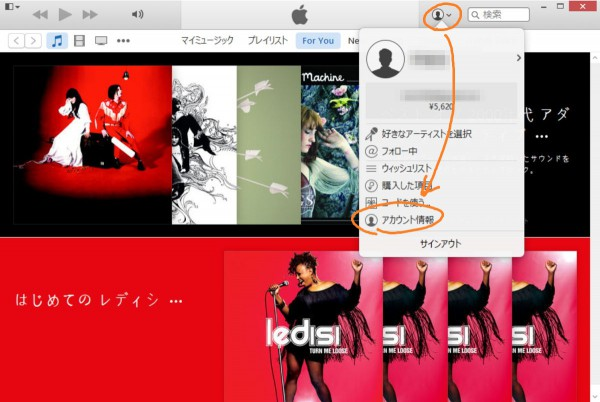 iTunes view account info