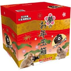 Yodobashi fortune bag 3