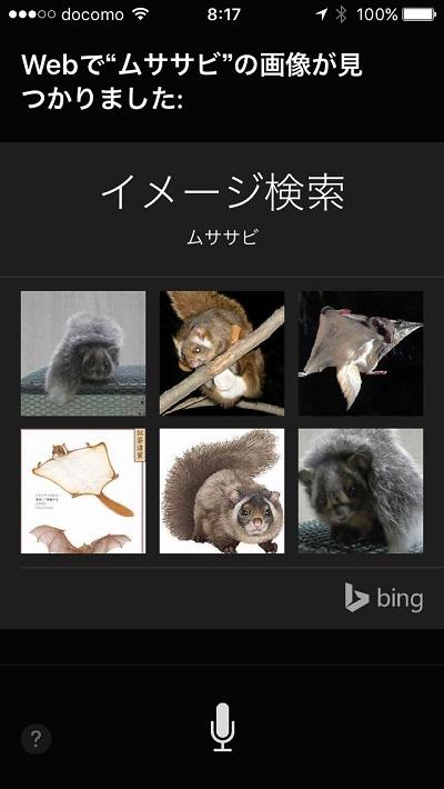 Siri image search