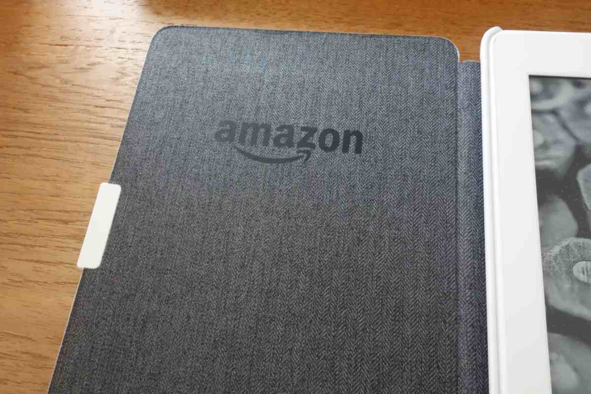 Kindle Paperwhite (2015) Genuine Cover - 5