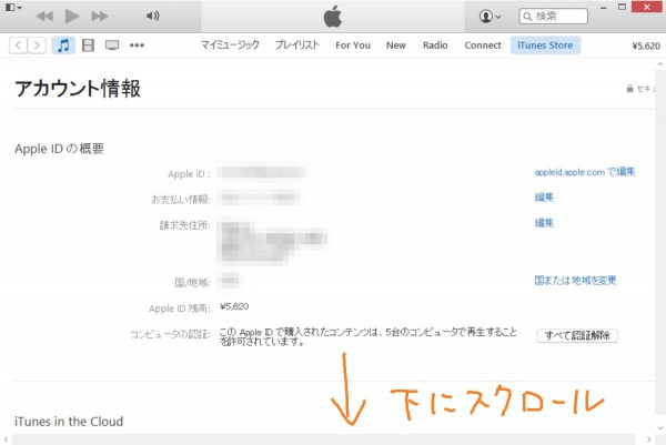 iTunes account info