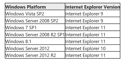 Internet Explorer support