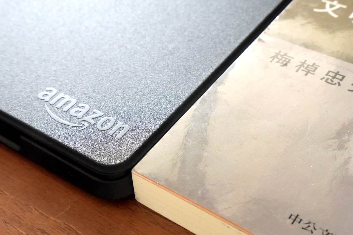 Kindle (7th gen) genuine cover 11