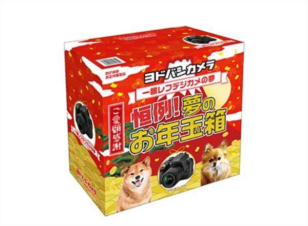 ヨドバシ・ドット・コム お年玉箱 2018
