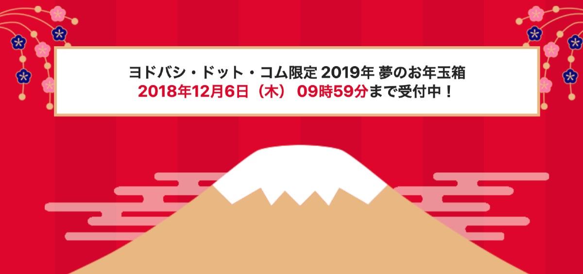 ヨドバシ・ドット・コム 夢のお年玉箱 2019 - 1