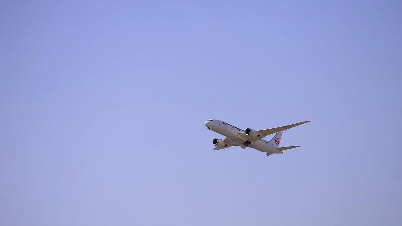 JAL Mileage - 2