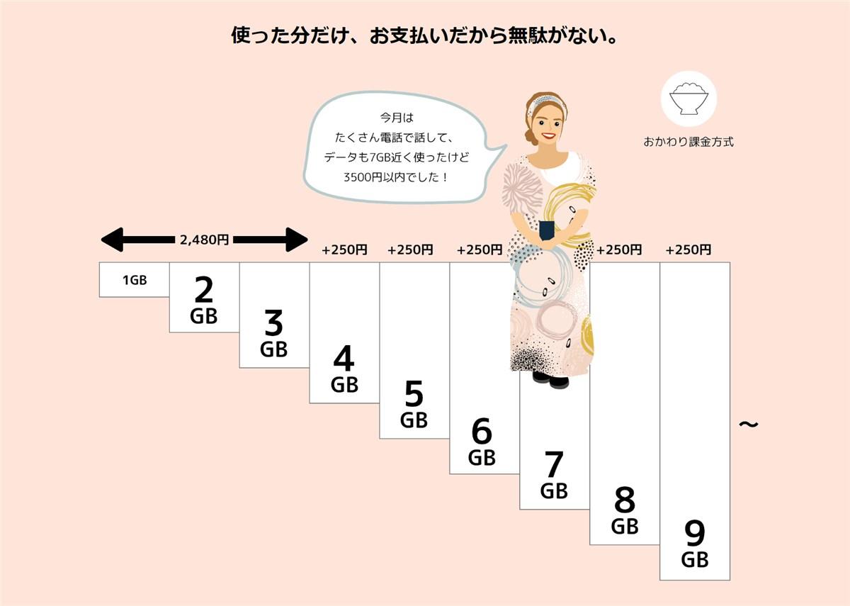 日本通信 合理的かけほプラン - 3
